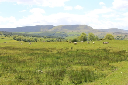 Walking view of Hay Bluff